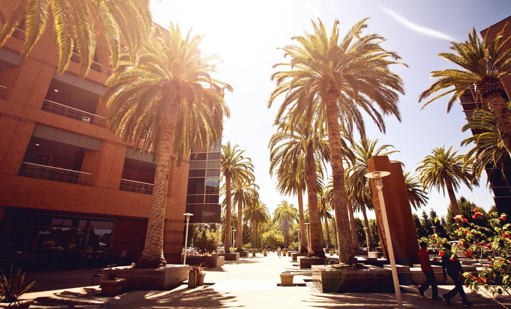 Silicon Valley m&a advisory, m&a advice, Tech companies