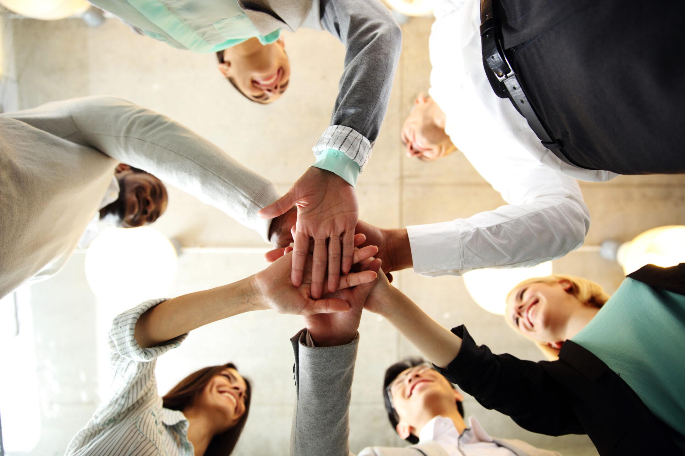 management team business
